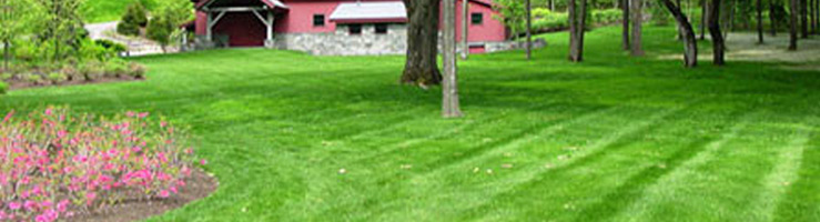 NH Landscaping Service: Mowing & More